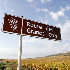 burgundy route_des_grands_crus